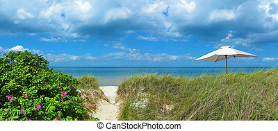 landscape with trasit to the beach and sunshade - panoramic...