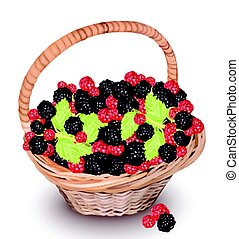 Berry fruits and cherry in a basket. Vector illustration
