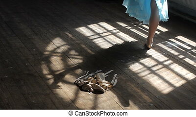 Shadow of the ballet dancer in the ballet hall