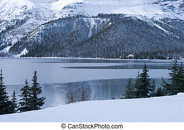 Freezing Cold Winter Lake Scene - Lake freezing over in cold...
