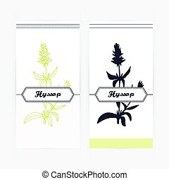 Hand drawn hyssop in outline and silhouette style. Spicy...