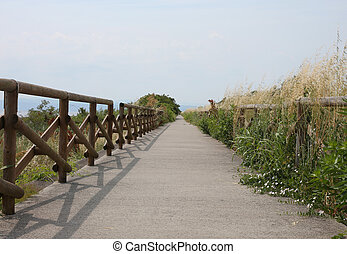 cycle path along the protected nature reserve with the...