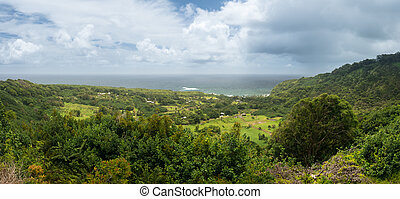Panoramic view of taro fields near Keanae in Maui - Taro...