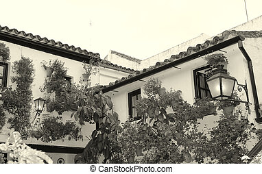 old Andalusia patio