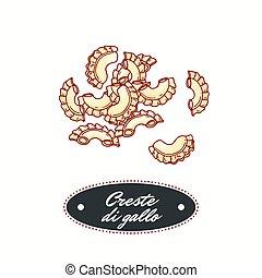 Hand drawn pasta creste di gallo isolated on white. Element...