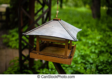 the device for feeding the birds