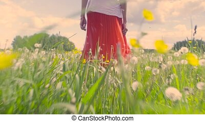 Legs of young woman walking on the meadow - Dolly shot...