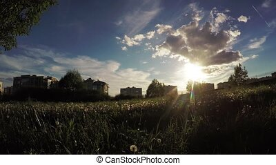 Urban lawn at sunset - Dynamic panorama against the sun by a...