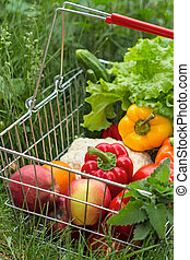 Shopping basket with vegetables and fruits