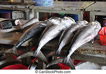 Raw Fish - Raw fish for sale on the market in Hoi An,...