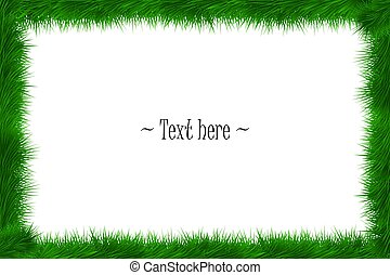 Frame of grass on white background
