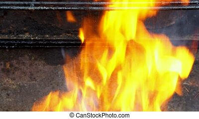 fire wood for barbecue charcoal Burning wood and coal -...