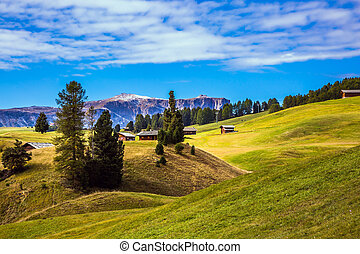 Well-known ski resort - The Alps di Siusi. Well-known...
