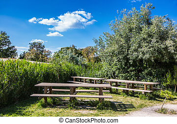 Superb area for a picnic. Green bushes and tables with...