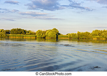Landscape with water and vegetation in the Danube Delta,...