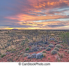 Uluru - Early morning light on Uluru Ayers Rock from Kata...