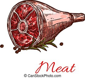 Vector raw fresh hind quarter meat isolated icon - Hind...
