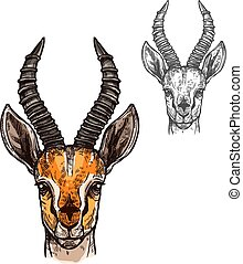Antelope vector sketch icon of African wild animal