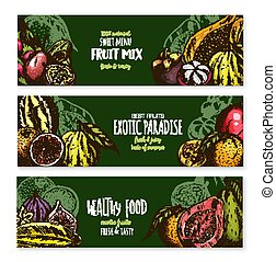 Vector banners of exotic fruits mix for menu