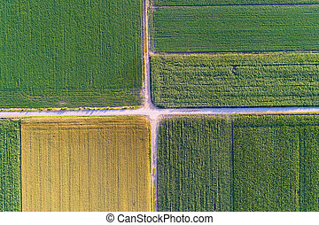 Top view of agricultural parcels - Abstract geometric shapes...