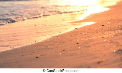 Waves on sandy beach at sunset.