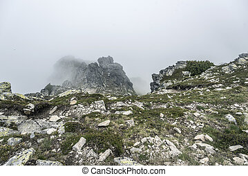 Mountain landscape on a cloudy day with rain clouds. Tatra...