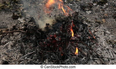 Approximation, zoom burning fire and throwing leaves into the fire. leaves, grass and other natural vegetation with thick white smoke.
