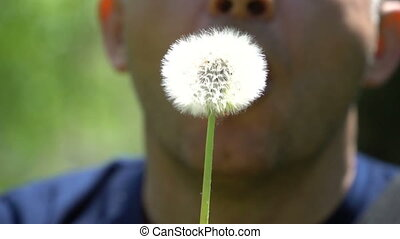 Young man blowing dandelion on summer field.