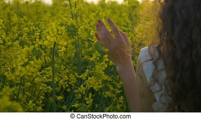Closeup of woman hand caressing canola flower walking in the...
