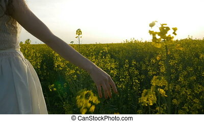 Hand of beautiful young woman gracefully caressing rapeseed walking on golden field
