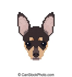 Chihuahua head in pixel art style. Dog vector illustration.