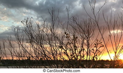 sunset on the Lake with trees without leaves - dramatic...