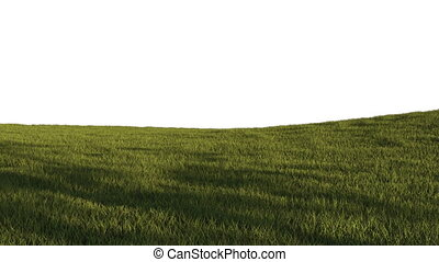 Green grass background texture made in 3d software