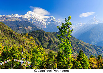Amazing view in the mountains - Amazing morning view in the...