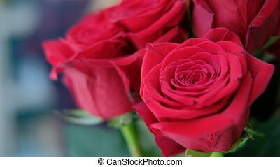 Buds of red roses in bouquet stand indoors. Bright scarlet...