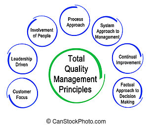Total Quality Management Principles