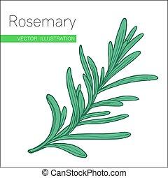 rosemary fill