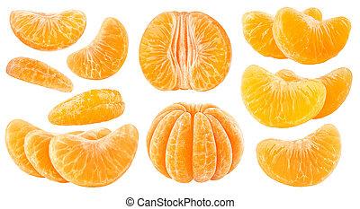 Isolated citrus segments. Collection of tangerine, orange...