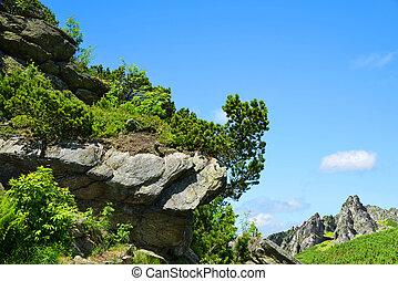 Mlynicka Valley in Vysoke Tatry (High Tatras), Slovakia -...