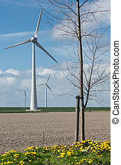 Dutch landscape with wind turbines and plowed field in early spring