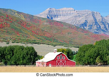 Red Barn In Autumn - Large red barn with Timpanogos Mountain...