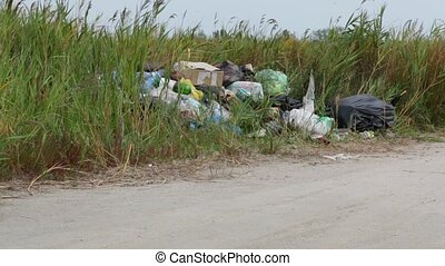 Environmental pollution - Pollution of nature. Garbage in...