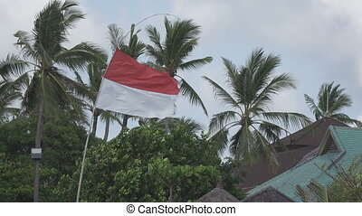 The flag of Indonesia develops on wind against the...