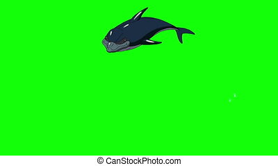 Navy Blue Dolphin Jump Out of the Water. Animated footage,...