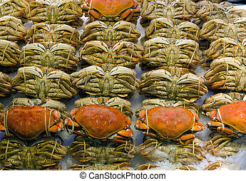 Dungeness Crabs Display at Fresh Seafood Stall - Rolls of...