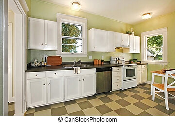 Kitchen - Newly remodeled kitchen in an old craftsman home...
