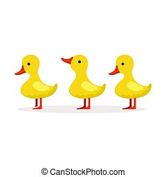 Three cute cartoon ducklings characters standing one after...
