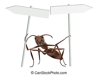 ant pointing opposite directions - ant pointing with blank...