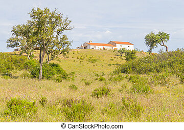 Farm house with cow, Cork tree forest and Esteva flowers in...