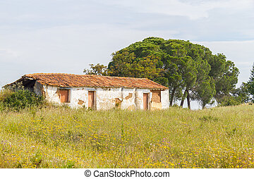 Farm house with flowers and pine trees in Vale Seco,...